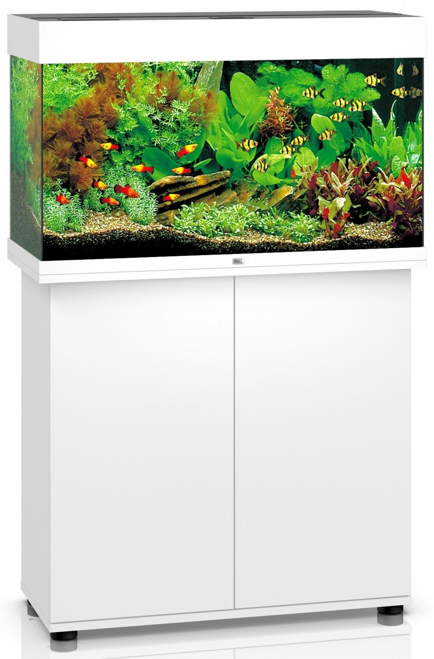 juwel rio led 125 litraa 81 x 36 x 50 cm helsingin akvaariokeskus ky. Black Bedroom Furniture Sets. Home Design Ideas