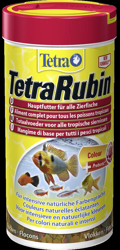 Tetra Oulu